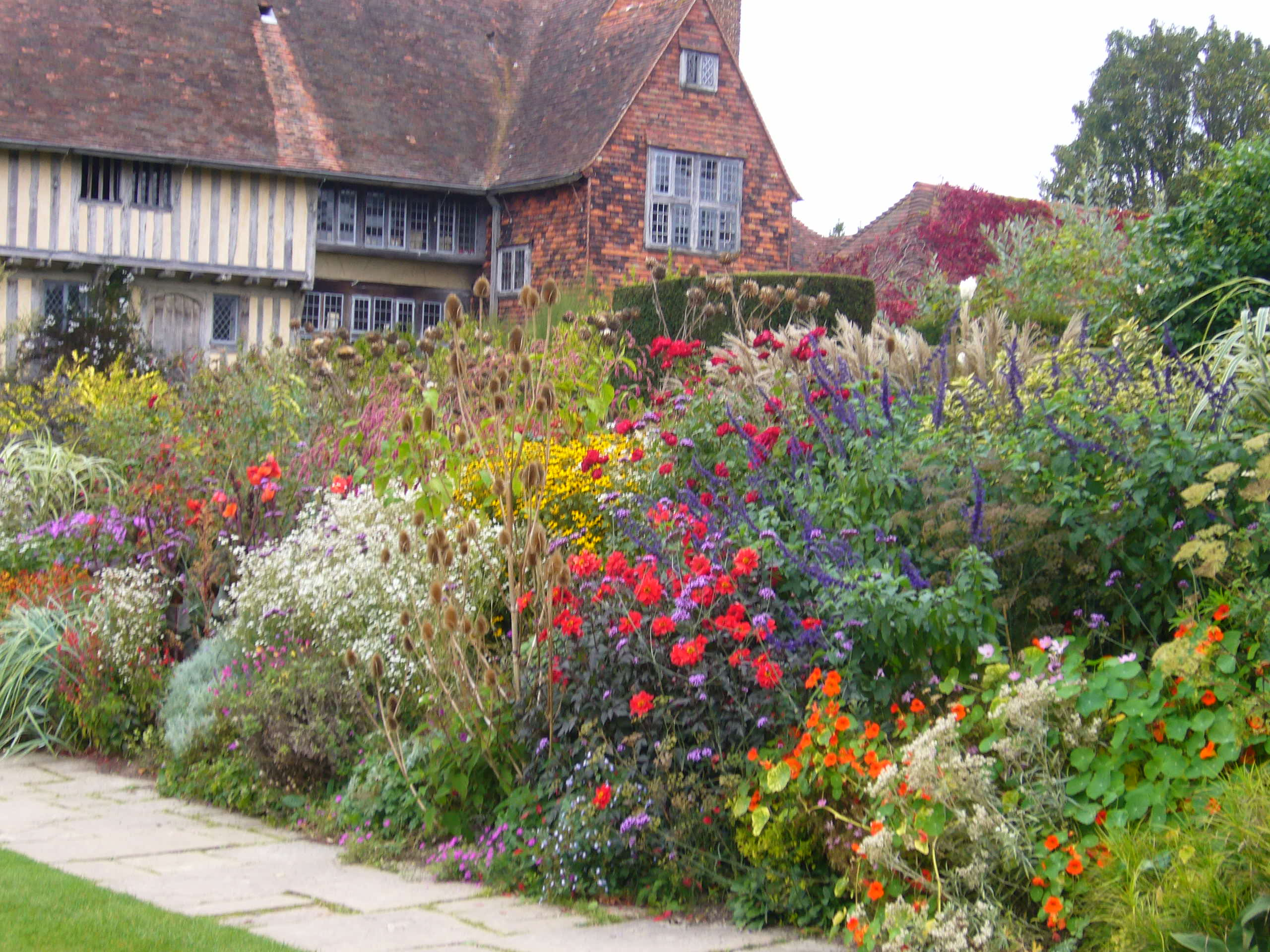 The bright tricks of a Great Dixters mixed borders race all along the ...