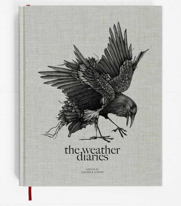 1-The-Weather-Diaries-cooper-gorfer-gestalten-yatzer