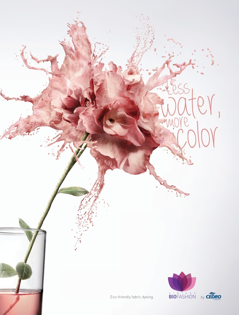Flower-1-o